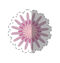 flower ornate image cut line vector image