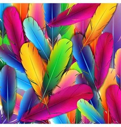 Background with colorful feathers vector