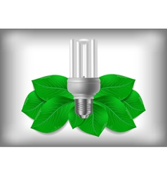 Energy saving bulb and green leaves vector