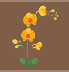 flower summer natural plant vector image