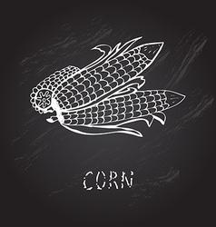 hand drawn corns vector image