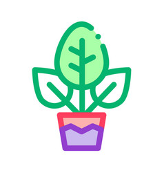 plant in pot icon outline vector image
