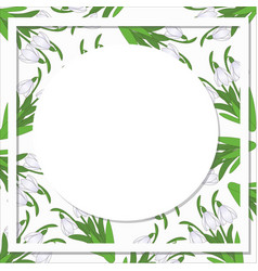 Postcard on a pattern with snowdrops vector