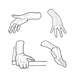 Set of hand gestures on white background vector