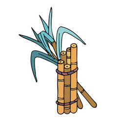 Sugar cane with leaves in doodle style with stroke vector