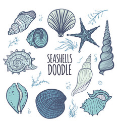Colorful set of seashells on white background vector