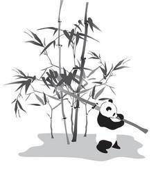 panda with bamboo branch vector image
