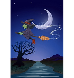 a witch travelling with her broomstick vector image