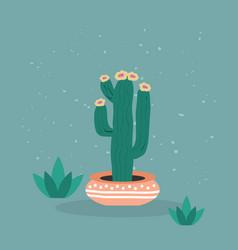 beautiful abstract single saguaro cactus tree icon vector image