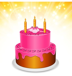 Cake vector image