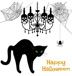 Webs and black cat vector