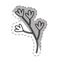 flower branch ornate image monochrome vector image