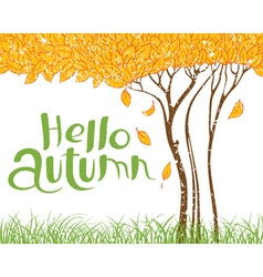 Hello autumn with tree with faling leaves vector image vector image