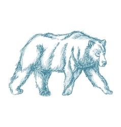 Big bear sketch blue vintage vector