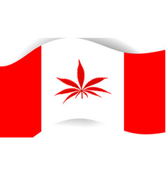 canadian flag with marihuana inside vector image