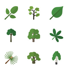 Flat icon natural set of decoration tree linden vector
