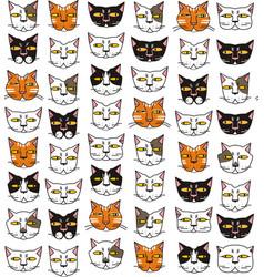 funny cats muzzles vector image