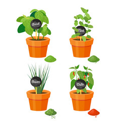 Natural spices grown in plastic flowerpots set vector