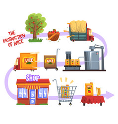Production juice from an orchard to table set vector