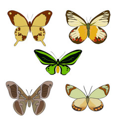 set of hand drawn colorful doodle butterflies vector image