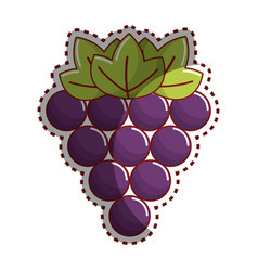 sticker grapes fruit icon image vector image vector image
