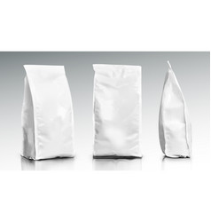 3d blank foil or paper food pouch bag pack vector