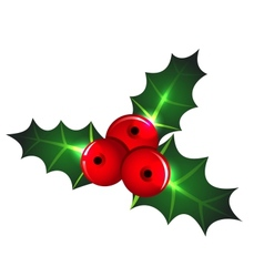 Christmas mistletoe icon vector image