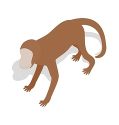 Monkey icon in isometric 3d style vector image