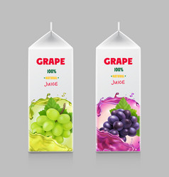 packaging design for grape juice vector image