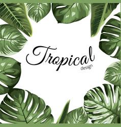 tropical design border frame element green vector image