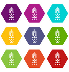Wheat icons set 9 vector