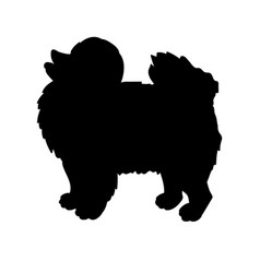 silhouette of spitz isolated on white background vector image