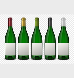 set 5 realistic green bottles of wine with vector image vector image
