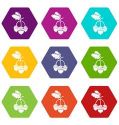 acorn icons set 9 vector image