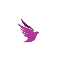 bird wing dove logo template vector image
