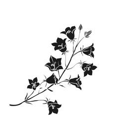 black silhouette campanula vector image