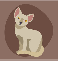 Cat breed sphinx cute pet portrait fluffy young vector