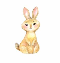 Cute brown rabbit vector