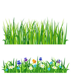 green grass nature design elements vector image