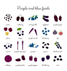 Hand drawn purple and blue foods set vector