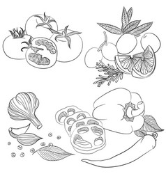 Line art various vegetables vector