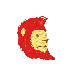 lion head with flowing mane drawing vector image
