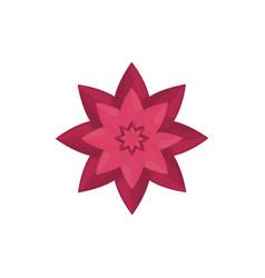 pink flower decoration image vector image