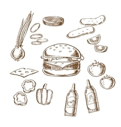 sketch tasty burger with many ingredients vector image