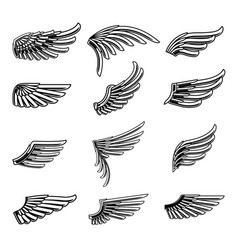 vintage wings icon set01 vector image