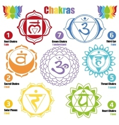 Seven chakras of the Human body and Our Health vector image vector image