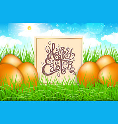 Orange eggs in a field of grass with blue sky vector