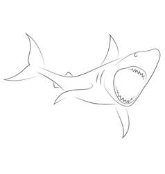 black line shark attacks on white background vector image
