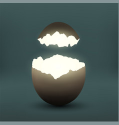 broken chicken egg vector image
