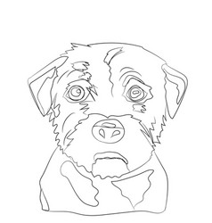 dog portrait lines vector image